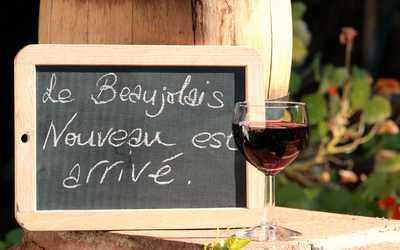 «Божоле Нуво» или «Молодое вино»