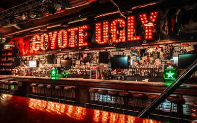 Банкетный зал бара Гадкий Койот (Сoyote Ugly) на Литейном проспекте фото 1