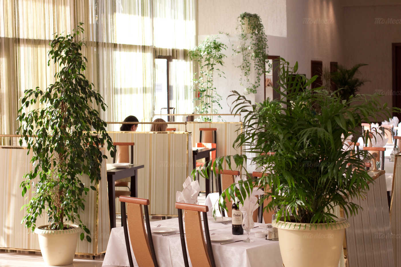 Меню ресторана Прага (Praga) на Торфяной дороге