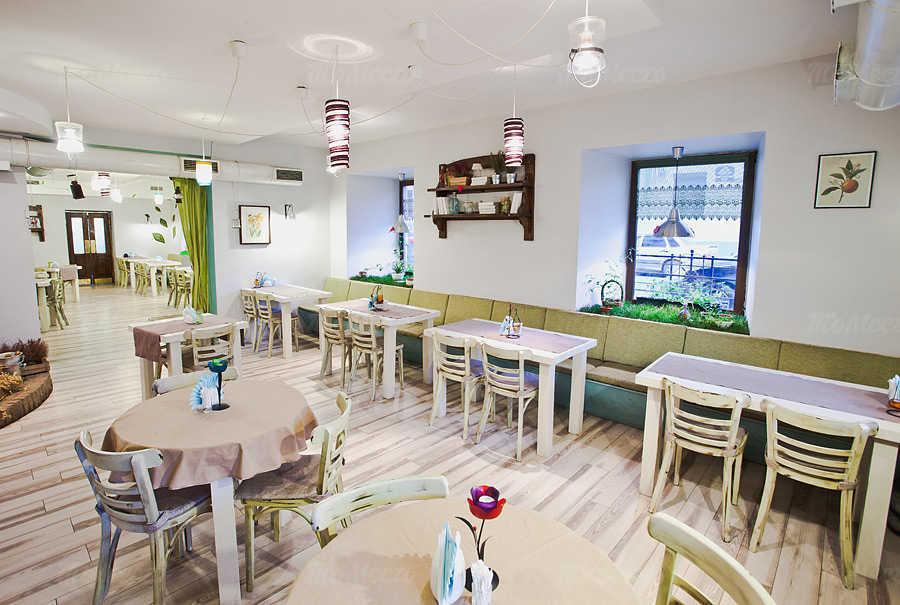 Меню ресторана Тепличные условия в набережной канале Грибоедовой