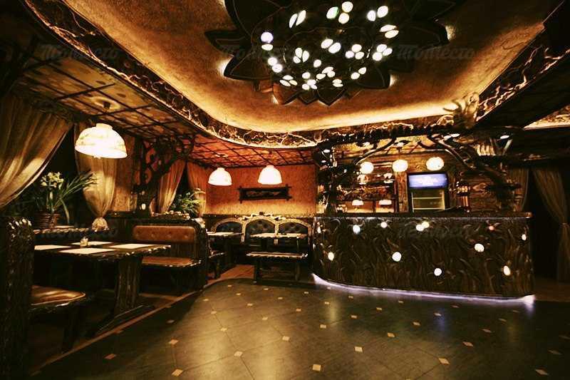 Банкетный зал бара, караоке клуба, ресторана Forrest Cafe (Форрест Кафе) на
