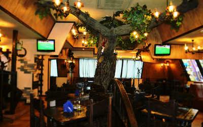 Банкетный зал кафе Длинный нос на улице Крисановой